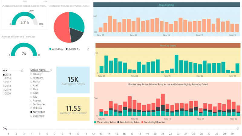 Be Fitbit BI Developer in Few Steps: Step 3 Visualization