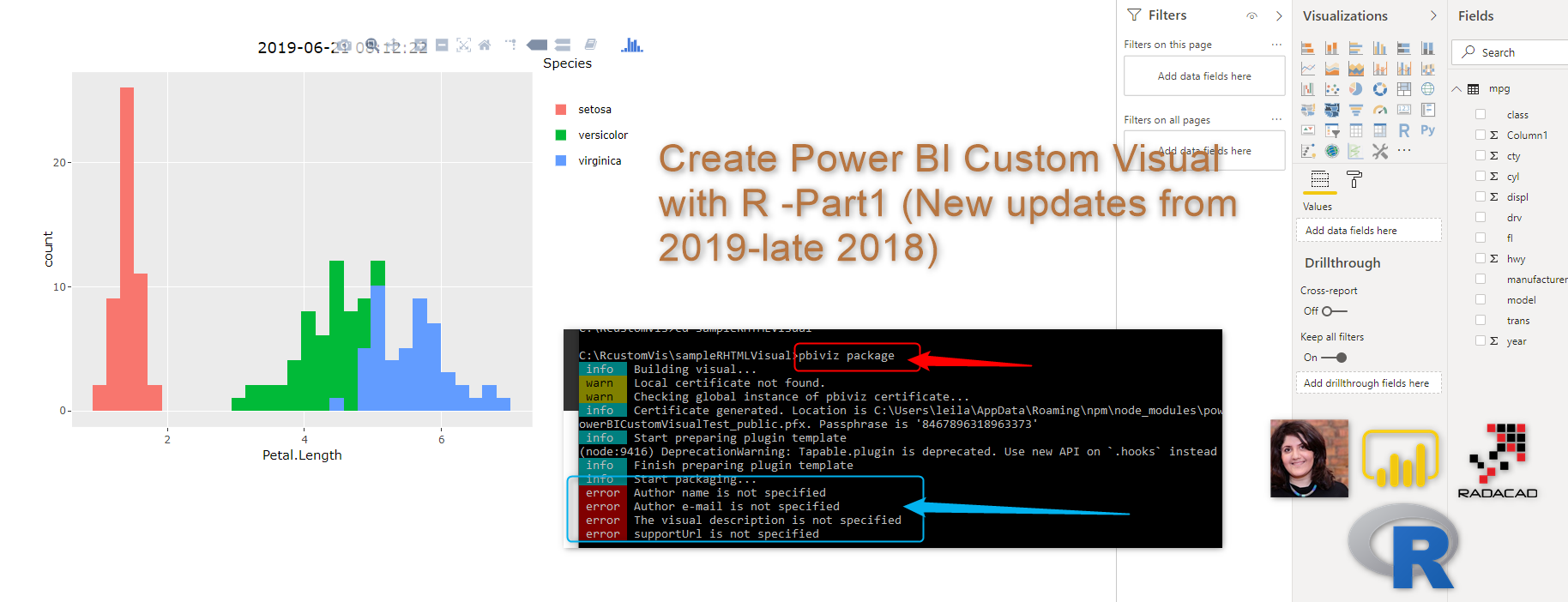 Interactive Charts using R and Power BI: Create Custom