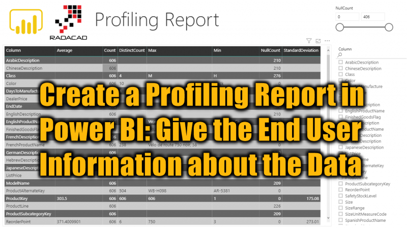 Create a Profiling Report in Power BI: Give the End User Information about the Data